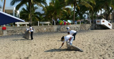 Beach-cleaning-1605-2
