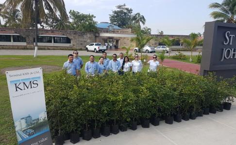 Reforestacion1707282